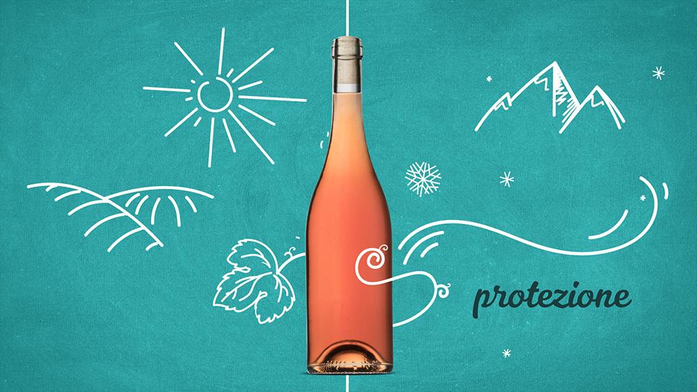 Le forme delle bottiglie di vetro hanno tanto da insegnare - Bottiglie in vetro per vino da Arpaia